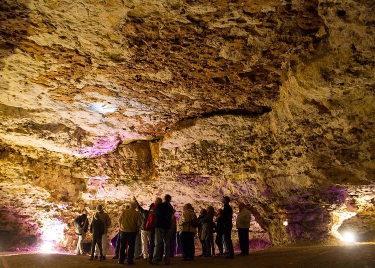 Visite Guidée Grottes du Foulon à Chateaudun