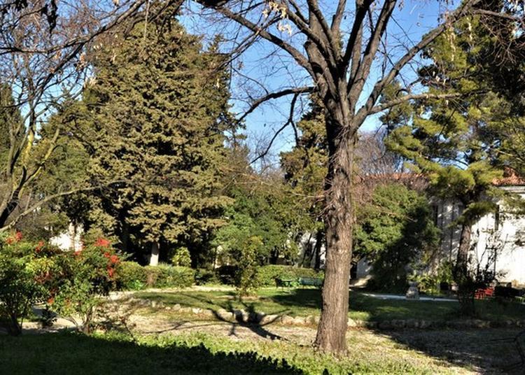 Visite Guidée Institut protestant de théologie à Montpellier