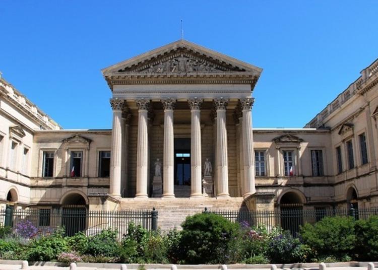 Visite Guidée à Montpellier