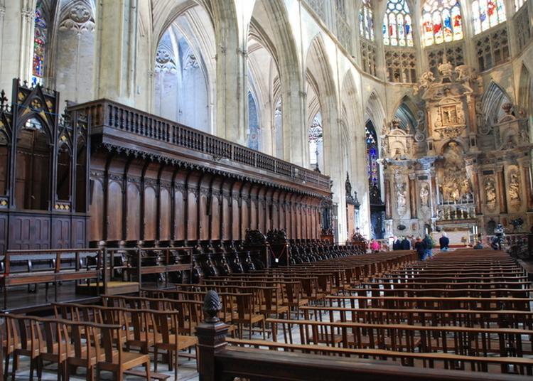 Visite Guidée à Toulouse