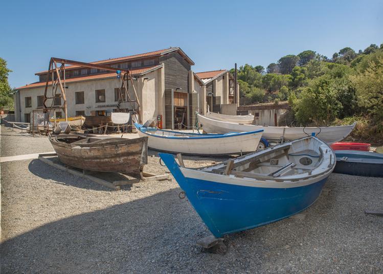 Visite Guidée à Port Vendres