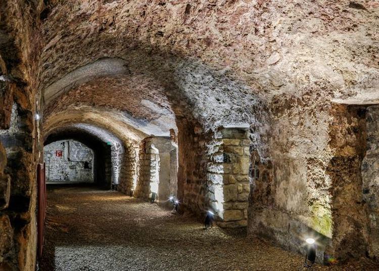Visite Guidée à Narbonne