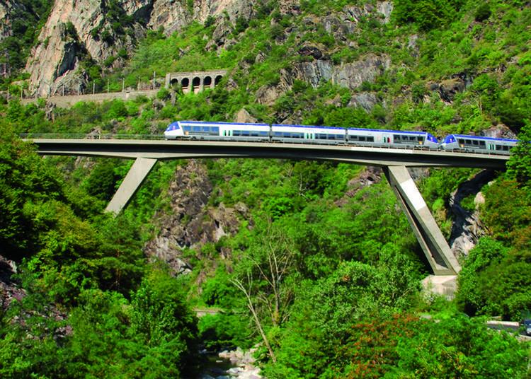 Visite Guidée à Bord Du Train Des Merveilles à Nice