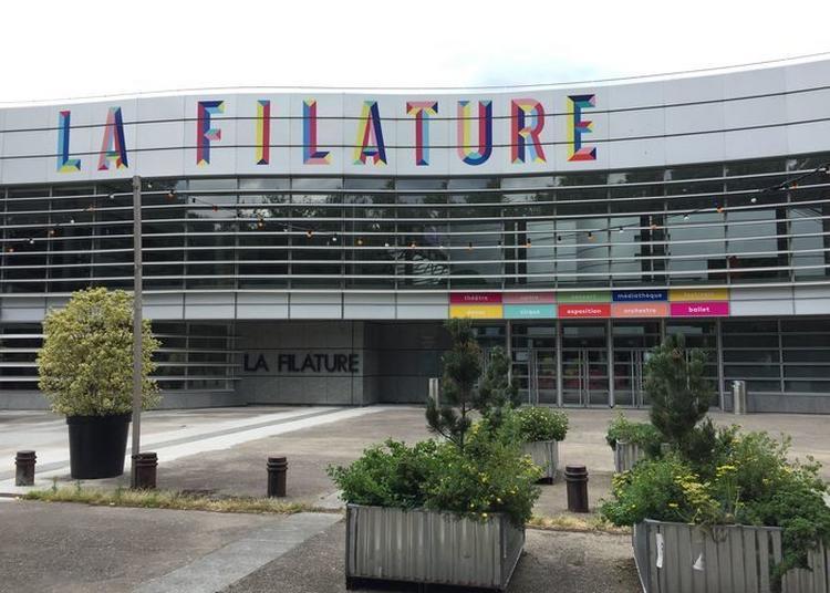 Visite Guidée à La Découverte Des Secrets Du Théâtre à Mulhouse