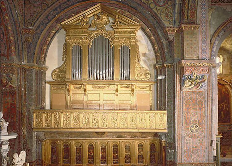 Visite Guidée à Trois Voix De La Cathédrale à Cavaillon