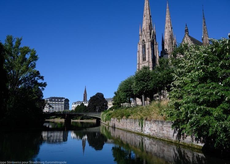 Visite Guidée : Comme Un Poisson Dans L'ill à Strasbourg