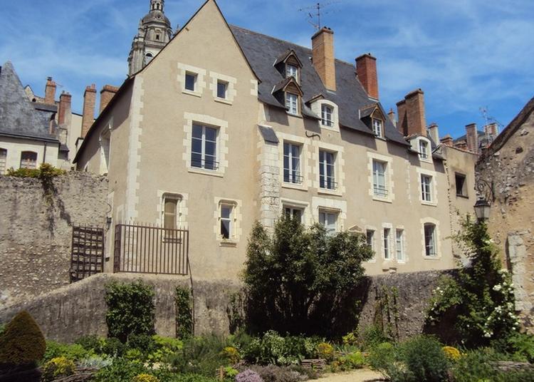 Visite Guidée Cours Et Demeures De La Renaissance à Blois