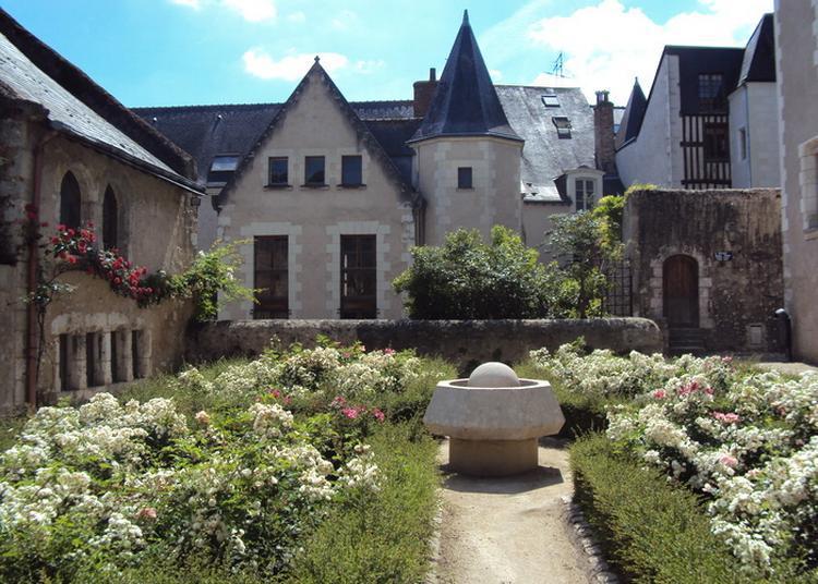 Visite Guidée - Cours Et Demeures De La Renaissance à Blois