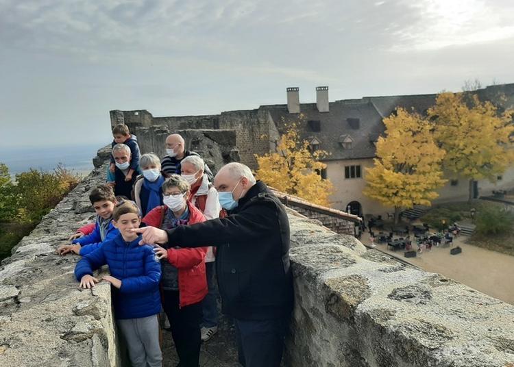 Visite Guidée D'un Des Plus Grands Monuments Habsbourg En Haute-alsace à Wintzenheim