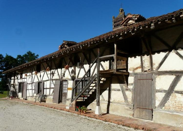 Visite Guidée D'une Ferme à Cheminée Sarrasine Datant De 1460 à Montrevel en Bresse