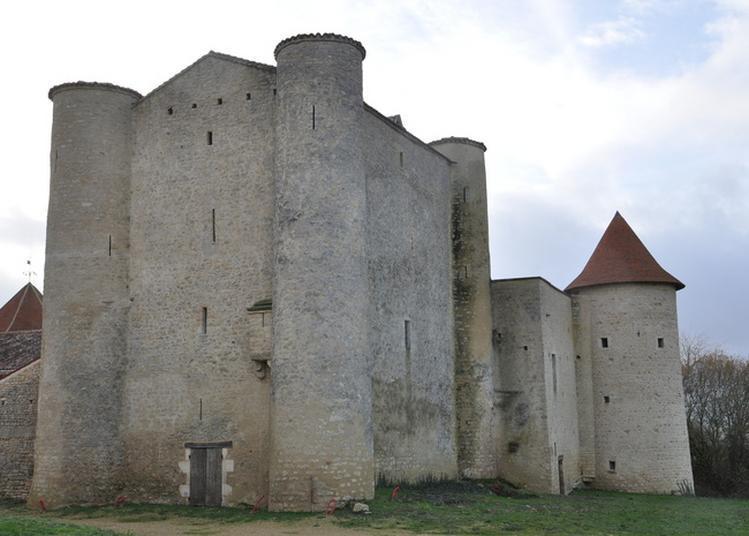 Visite Guidée D'une Forteresse Médiévale à Cherves