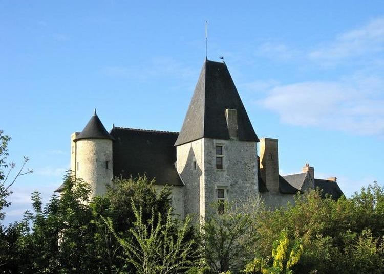 Visite Guidée De Breil De Foin, Musée D'art Et D'histoire D'époques Romane, Gothique Et Henri Iv, Dans Un Parc Botanique. à Genneteil