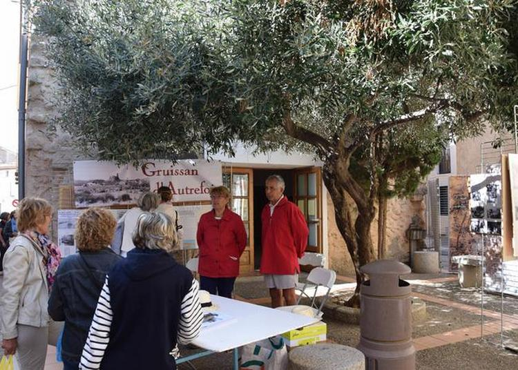 Visite Guidée De Gruissan