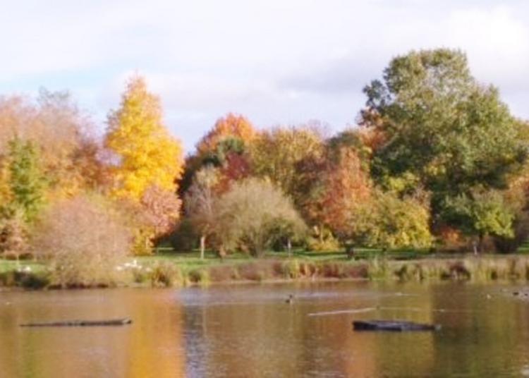 Visite Guidée De L'arboretum à Bressuire