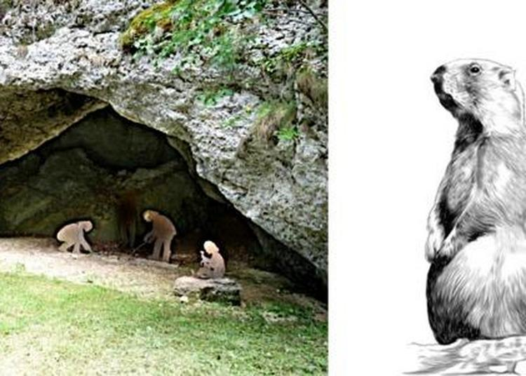 Visite Guidée De L'association Le Dreffia En Partenariat Avec L'association Archéologie Préhistorique Entre Saône Et Rhône à Tenay