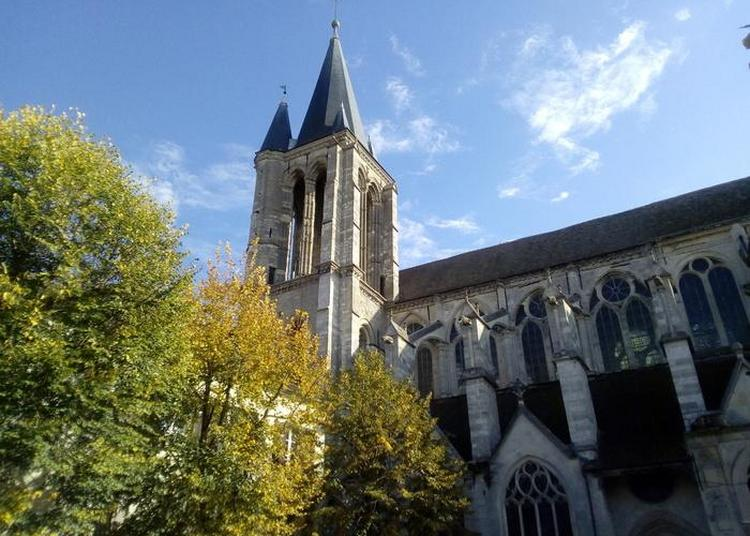 Visite Guidée De L'église Saint-Étienne à Brie Comte Robert