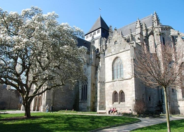 Visite Guidée De L'église Saint-malo à Dinan