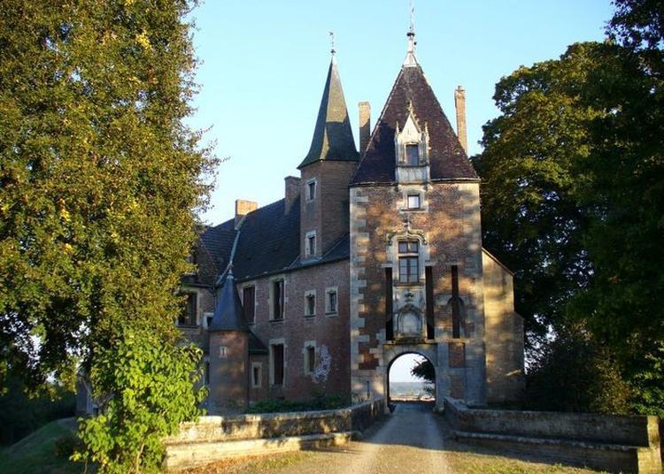 Visite Guidée De L'église Sainte Madeleine Et Des Jardins Du Château Attenant à Auvillars sur Saone