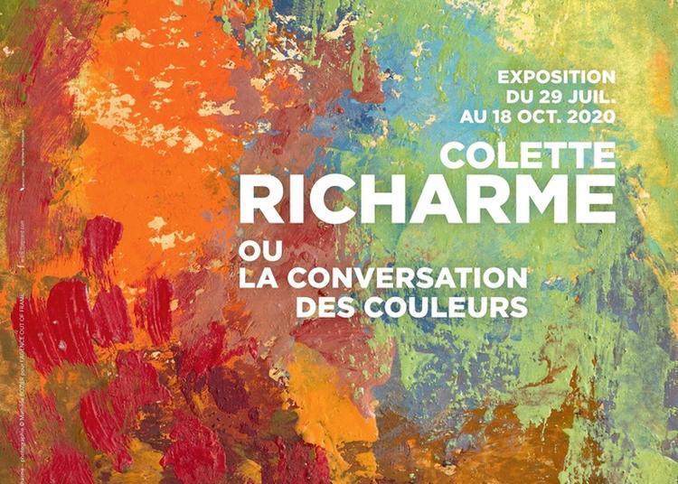 Visite Guidée De L'exposition Colette Richarme Ou La Conversation Des Couleurs à Montpellier