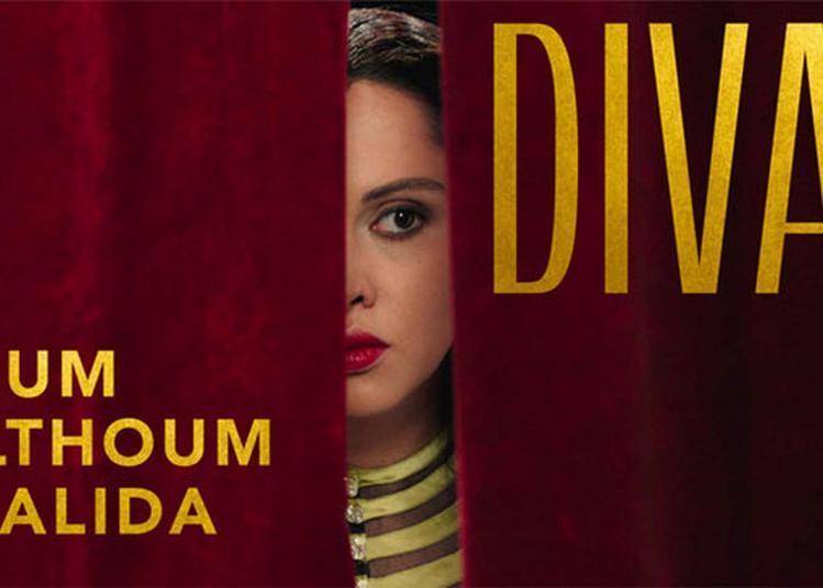 Visite Guidée De L'exposition Divas, D'oum Kalthoum à Dalida à Paris 5ème