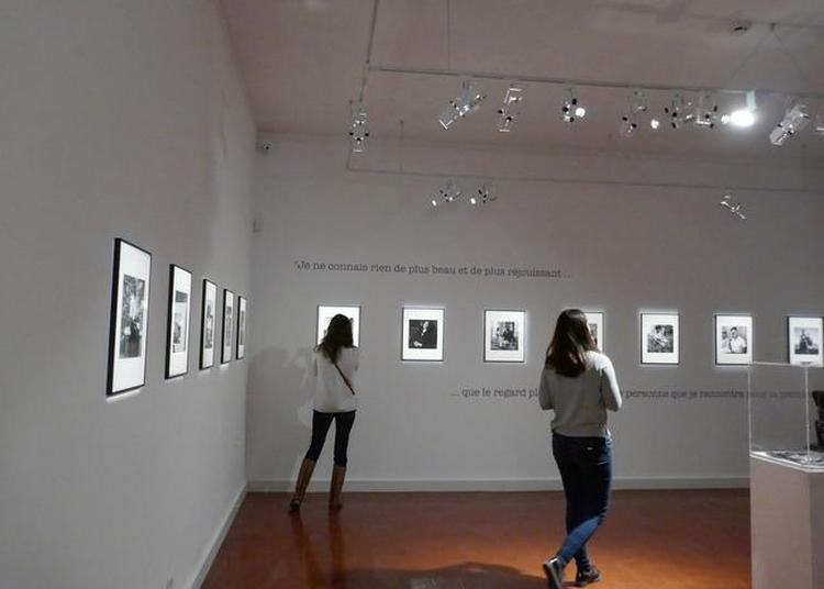 Visite Guidée De L'exposition Joseph Zobel, L'oeil De L'écrivain à Ales