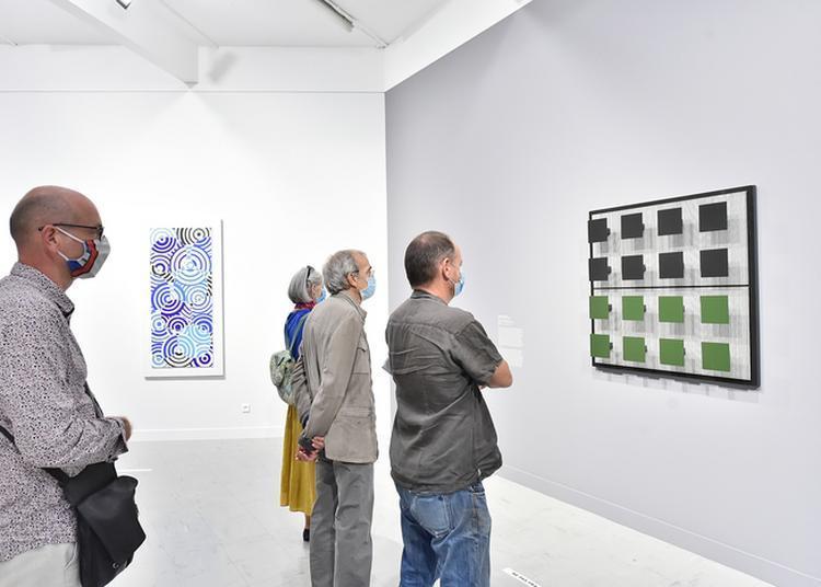 Visite Guidée De L'exposition Sud-est à Aix en Provence