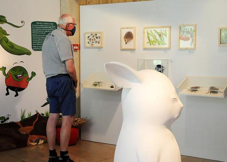 Visite Guidée De L'exposition Temporaire Le Potager-fruitier. Un Jardin Des Merveilles à Cuisiat