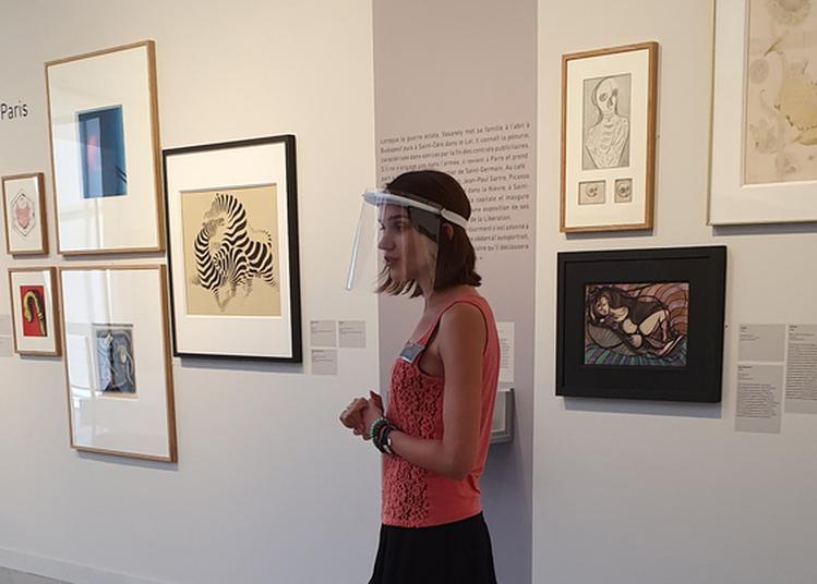 Visite Guidée De L'exposition Vasarely Plasticien à Aix en Provence