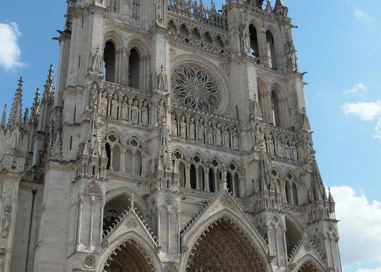 Visite Guidée De La Cathédrale Notre-dame à Amiens