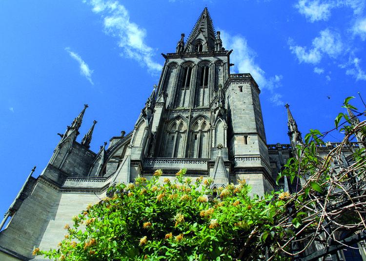 Visite Guidée De La Cathédrale Notre-dame-de-sées à Sees