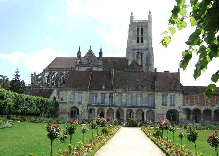 Visite Guidée De La Cathédrale Saint-etienne Et De La Cité épiscopale De Meaux
