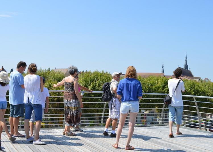 Visite Guidée De La Cité Viticole à Saint Pourcain sur Sioule
