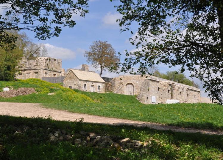 Visite Guidée De La Colline Historique De Vergy à Reulle Vergy