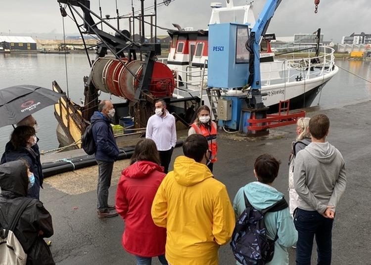 Visite Guidée De La Criée Du Port De Saint-malo à Saint Malo
