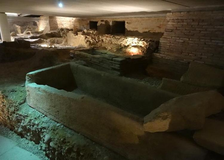 Visite Guidée De La Crypte Archéologique à Toulouse
