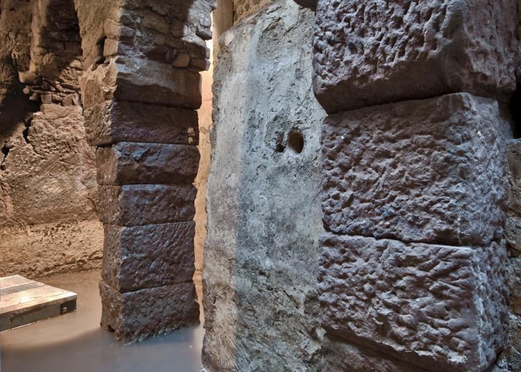 Visite Guidée De La Crypte Archéologique Du Vivier Romain à Frejus