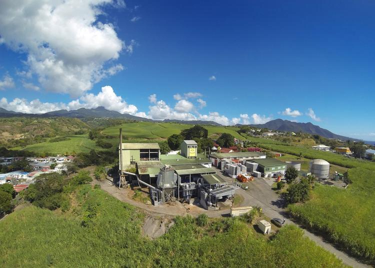 Visite Guidée De La Distillerie Bologne à Basse Terre