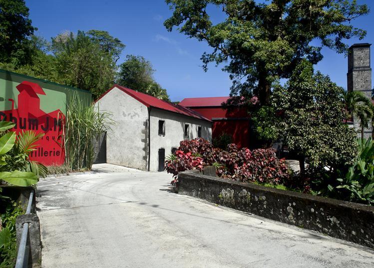 Visite Guidée De La Distillerie J.M à Macouba