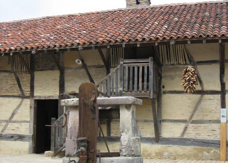 Visite Guidée De La Ferme Du Champ Bressan à Romenay