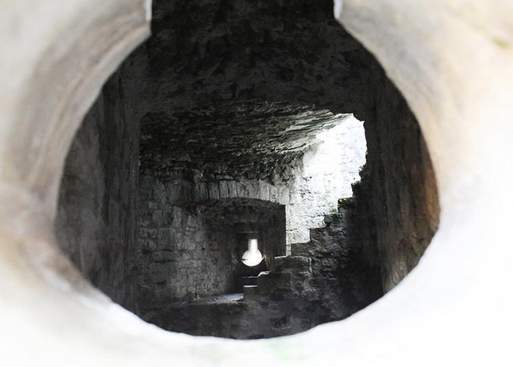 Visite Guidée De La Forteresse De Châtel-sur-moselle à Chatel sur Moselle