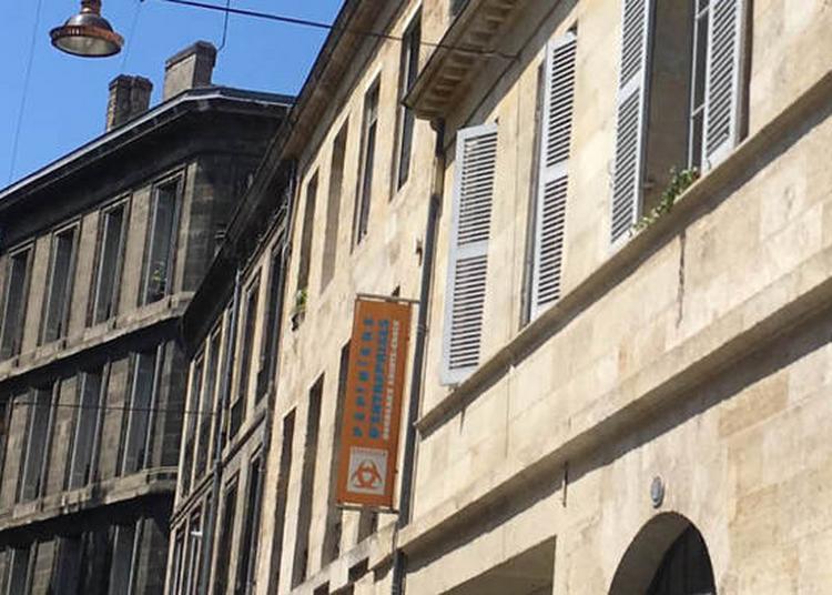 Visite Guidée De La Pépinière à Bordeaux