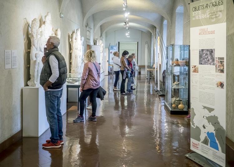 Visite Guidée De La Réserve Des Collections Archéologiques Départementales à Annecy