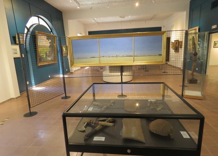 Visité Guidée De La Salle Des Beaux-arts Et Du « Cabinet De Curiosités » Du Musée à Bourbonne les Bains