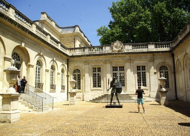 Visite Guidée De La Salle Des Maîtres Du Nord Au Musée Calvet à Avignon
