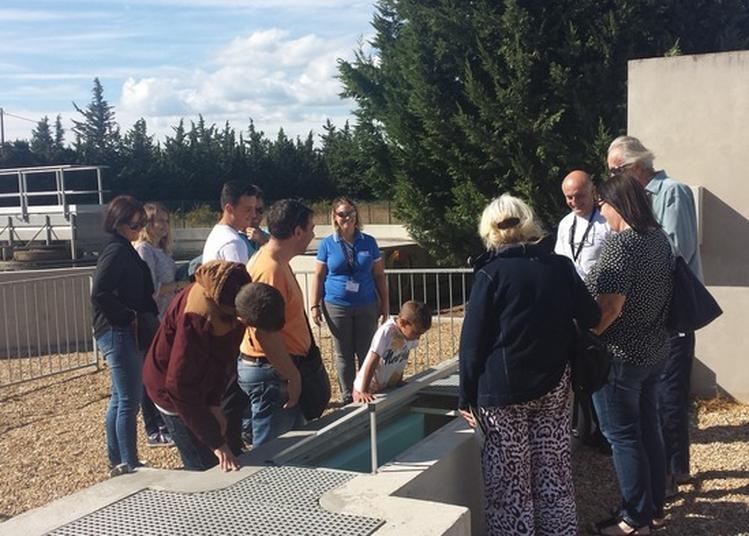 Visite Guidée De La Station D'épuration De Châteauneuf-les-martigues à Chateauneuf les Martigues