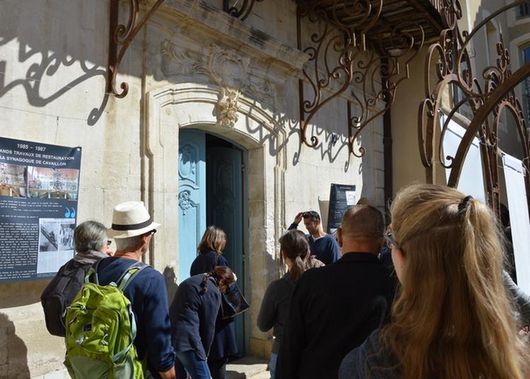 Visite Guidée De La Synagogue à Cavaillon
