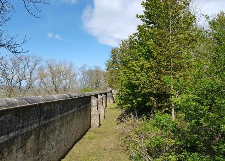 Visite Guidée De La Tour De L'abbaye à Watten