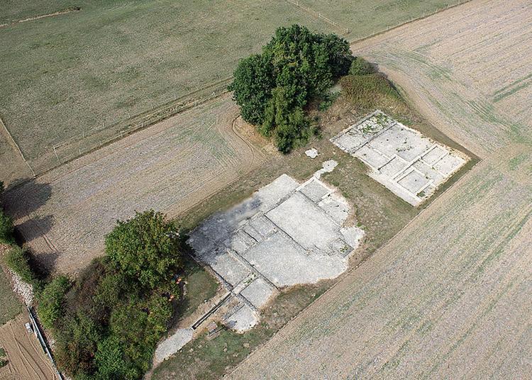 Visite Guidée De La Villa Gallo-romaine D'embourie à Embourie