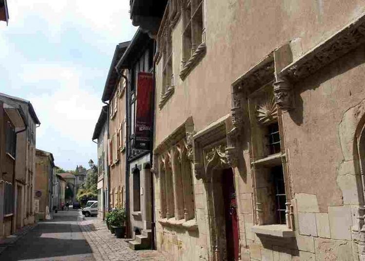 Visite Guidée De La Ville De Vic-sur-seille à Vic sur Seille