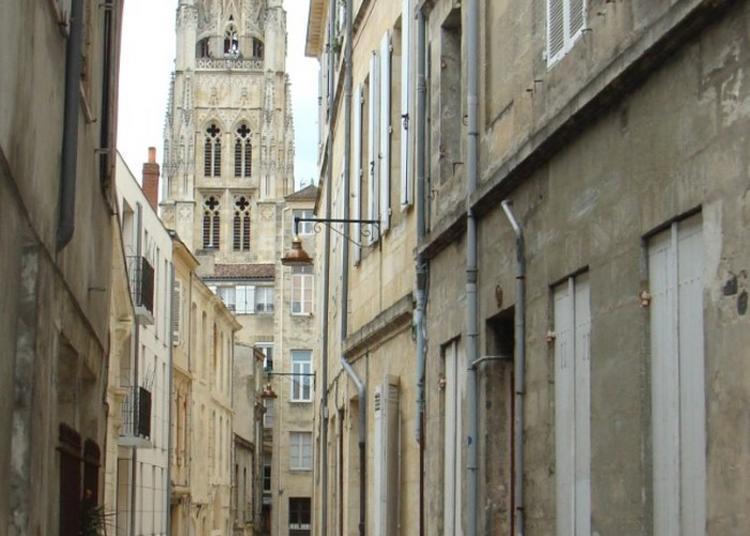 Visité Guidée : De Pey Berland à Montaigne, Vivre Et Apprendre Dans Le Bordeaux D'alors !